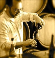 Living the Wine Lover's Dream in France   Vitabella Wine Daily Gossip   Scoop.it