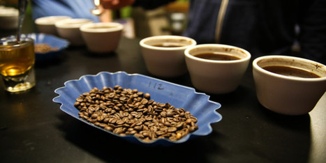 A Look Inside the Highly Caffeinated Life of a Coffee Roaster | Coffee News | Scoop.it