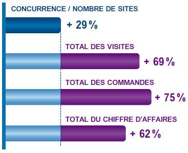 [Etude 2011]Quelle Est L'activité E-commerce Des TPE-PME ? | A l'ère du webmarketing. | Scoop.it