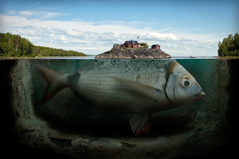 The surreal work of Erik Johansson - Design daily news | Wizards | Scoop.it