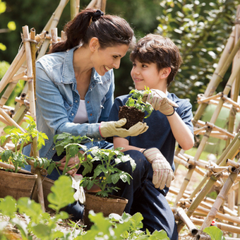 Tips for a Bountiful Backyard Garden - Idaho State Journal | Gardening with Lavende & Lemonade | Scoop.it