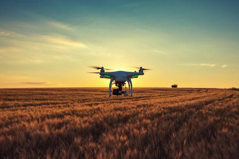 Le Big Data, une réponse à la crise agricole? | Revue de presse FNCUMA | Scoop.it