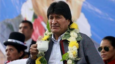 Evo Morales, complicado por esta campaña en Facebook y Twitter   Sociedad y Comunicación Digital (#socdig y #comdig)   Scoop.it