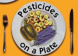 PESTICIDES ON MY PLATE: Food Allergies, Cancer, Ill Health Linked to Pesticides & Chemicals | YOUR FOOD, YOUR ENVIRONMENT, YOUR HEALTH: #Biotech #GMOs #Pesticides #Chemicals #FactoryFarms #CAFOs #BigFood | Scoop.it