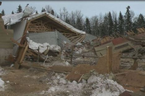 Snowfall causes Alberta barn collapse, several cows killed | Roof Collapse | Scoop.it
