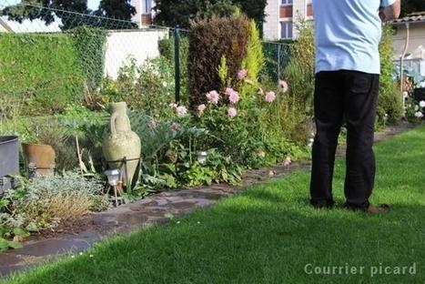 Les regrets du voisin qui avait lancé le chien | Nature Animals humankind | Scoop.it