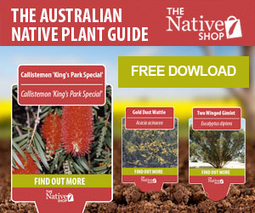 Australian native plants info in your pocket | Australian Plants on the Web | Scoop.it