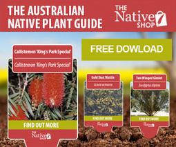 Australian native plants info in your pocket | Australian Plants on the Web | Scoop.it