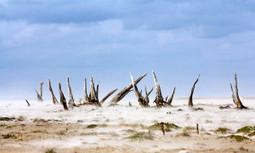 A Twenty-First Century Water War Erupts in Texas | EcoWatch | Scoop.it