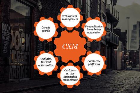 Expérience utilisateur sur les CMS : CXM | Customer Experience Management (CXM) | Scoop.it