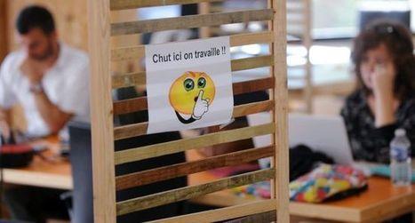 Un incubateur pour l'économie sociale et solidaire - ladepeche.fr | CDRQ Région Estrie | Scoop.it