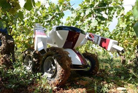 VIN : le robot vigneron ! | Oeno-digital | Scoop.it