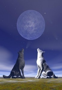 Self-Talk: Feeding the Good Wolf | The Psychology of Wellbeing | Positive Business DC | Scoop.it
