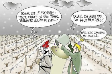 "LE DESSIN DE LA SEMAINe | ""Viticulture en gironde"" | Scoop.it"