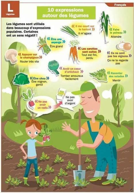 Expressions avec les legumes | Cours de français | Scoop.it