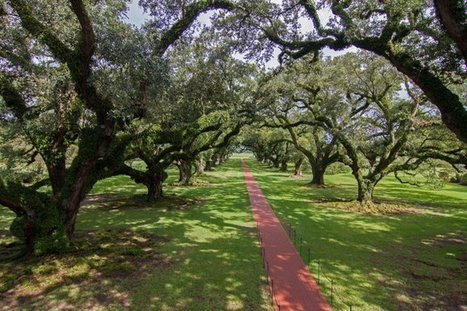 Tweet from @VisitNewOrleans | Oak Alley Plantation: Things to see! | Scoop.it