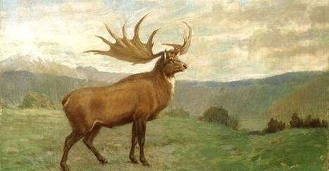 Extinct Animals of World - 21 Articles | The extinction of our wildlife | Scoop.it