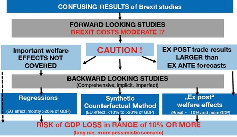 A Systemic Perception of the English Brexit Vote. | Business Coaching | Scoop.it
