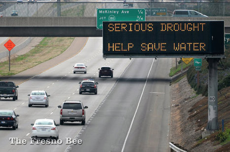 West-side San Joaquin Valley water calamity may be unfolding | How Drought is Changing the Valley | FresnoBee.com | biodiversity | Scoop.it