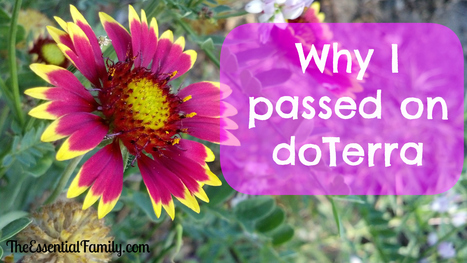 Why I passed on doTerra Essential Oils | Aromathérapie | Scoop.it