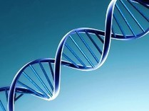 Unlocked: How heredity, environment affect gene expression - Odisha Sun Times | Breaking Environmental News | Scoop.it