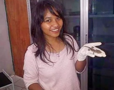 Doctors Baffled by Indonesian Woman Who Claims to Have Given Birth to Gecko Lizard | Strange days indeed... | Scoop.it