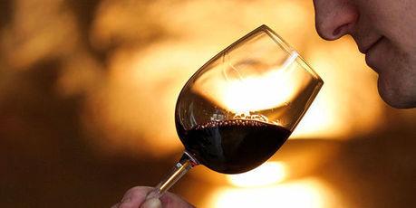 Le classement des vins de Saint-Emilion contesté devant la justice | Le vin quotidien | Scoop.it
