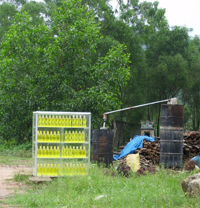 Mưa gió nhớ có dầu tràm | nu.dstin4@gmail.com | Scoop.it