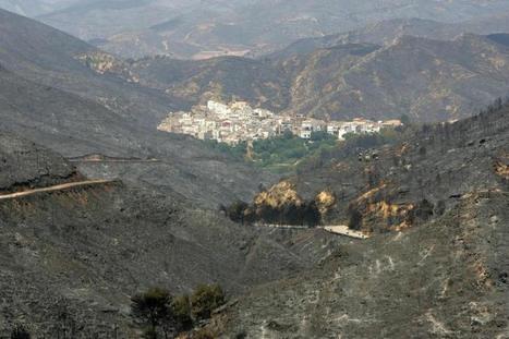 Medio Ambiente pretende legalizar la recalificación de suelo quemado | Territorio, Formación, Turismo Sostenible, Medio Ambiente y Cooperación al Desarrollo | Scoop.it