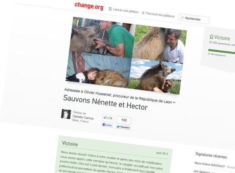Avec Change.org, la pétition est devenue un business - Rue89 | Web 2.0 et société | Scoop.it