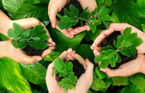 Calendar of Environmental Events | National & International Environmental Management | Scoop.it