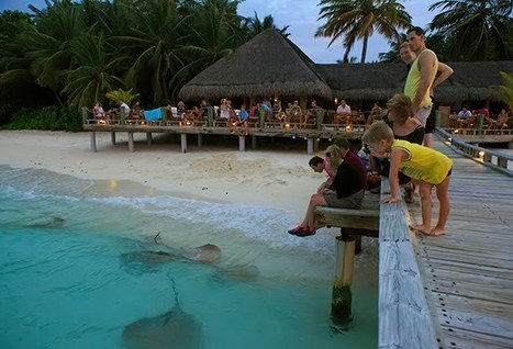 Make the Maldives Trip Remarkable For Your Kids   Capital Travel and Tour   Scoop.it