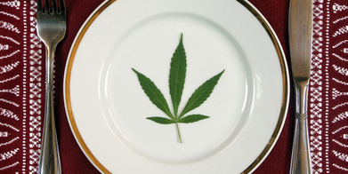 People are eating too much weed, officials are worried - Health - NZ Herald News | Health Education | Scoop.it