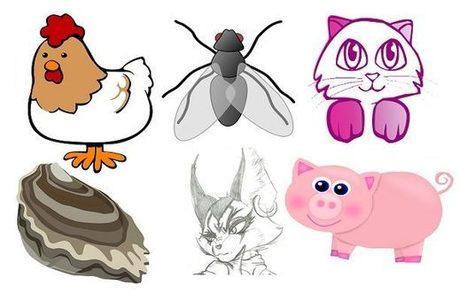 El origen de algunas expresiones que nombran un animal y que nada tienen que ver con animales | Fundamentos Léxicos | Scoop.it