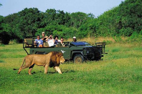 International LTC Packages | internationaltours.co.in | International Tours | Scoop.it