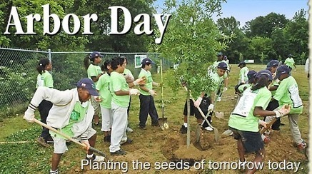 Arbor Day at arborday.org | School Gardening Resources | Scoop.it