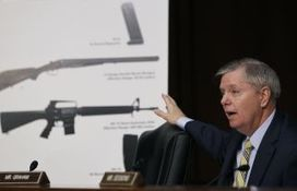 Graham digs in to ban mentally ill from guns, as Dems focus on assault weapons | 211E Critical Thinking | Scoop.it