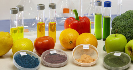 Transbio   Bio TRANSformation of by-products from fruit and vegetable processing industry into valuable BIOproducts.   Biotechnology breakthroughs: some interesting web stuff.   Scoop.it