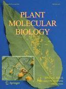 Plant Molecular Biology: Plant-Microbe Symbiotic Interactions (2016) | Emerging Research in Plant Cell Biology | Scoop.it