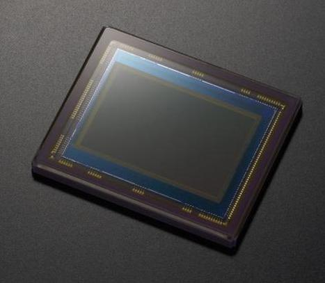 Sony rumored to announce 24MP APS-C sensor, what would Nikon do? (Nikon D400) | Photography Gear News | Scoop.it