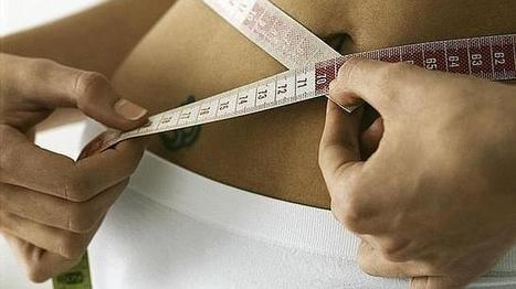 En busca de la dieta perfecta - ABC.es | Nutrición | Scoop.it