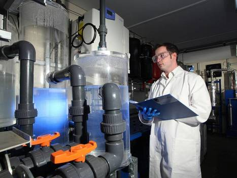 Pioneering scientists turn fresh air into petrol in massive boost in fight against energy crisis | TechWatch | Scoop.it
