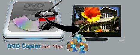 Use DVD Copier for Mac for Creating Backup | How to Copy DVD Files on Mac | Scoop.it