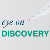 Eye on Discovery Volume 3 Issue 12: Divide and Conquer E-Discovery with Offshoring | Litigation Support Project Management | Scoop.it