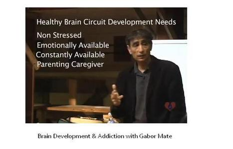 Current Education Reforms Ignore Neuroscience | BuildBetterSchools | Early Childhood and Leadership Inspiration | Scoop.it