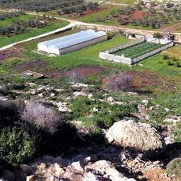 Israel orders West Bank settlement to stop polluting nearby Palestinian village | Jewish Education Around the World | Scoop.it