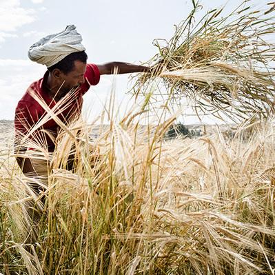 C'est le moment d'agir contre les changements climatiques et d'appuyer les populations des pays du sud | Questions de développement ... | Scoop.it