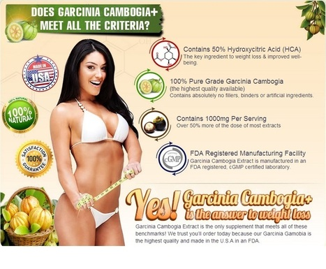 FOREVER GREEN GARCINIA CAMBOGIA -GET RISK FREE TRIAL | Increase metabolic rate as well as increase fat reduction | Scoop.it