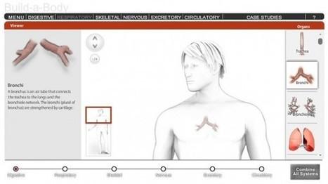 7 recursos online para aprender Anatomía y Fisiología | Educación Física TIC | Scoop.it