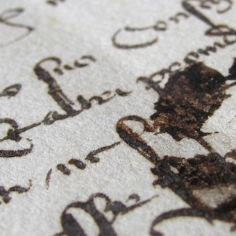 Of cats and manuscripts - Blog   Beyond the Stacks   Scoop.it